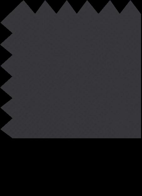 1040-17-negro