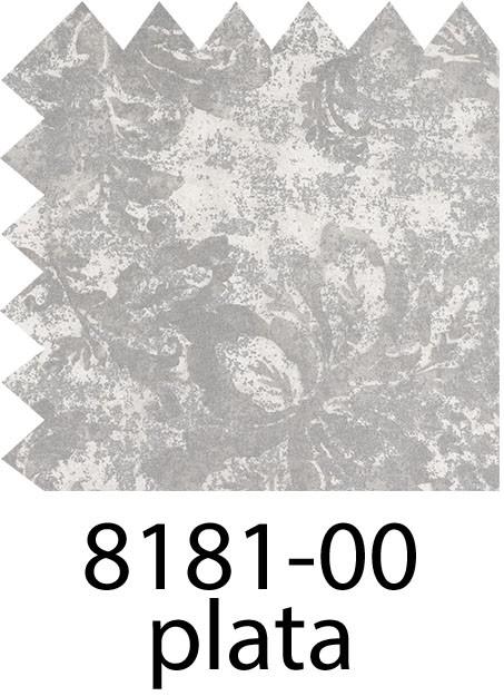 8181 - 00