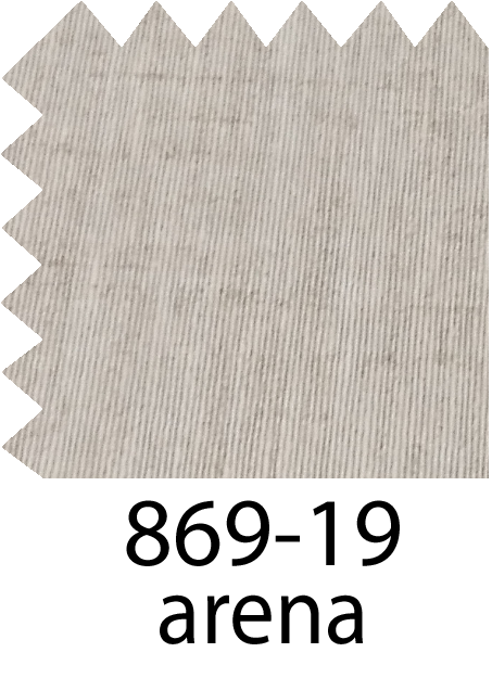 869-19